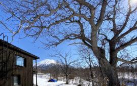 羊蹄山を望むロケーションに建つ住宅。この冬は例年になく晴れの日が多く、頂上まですっきりと山が見えました。