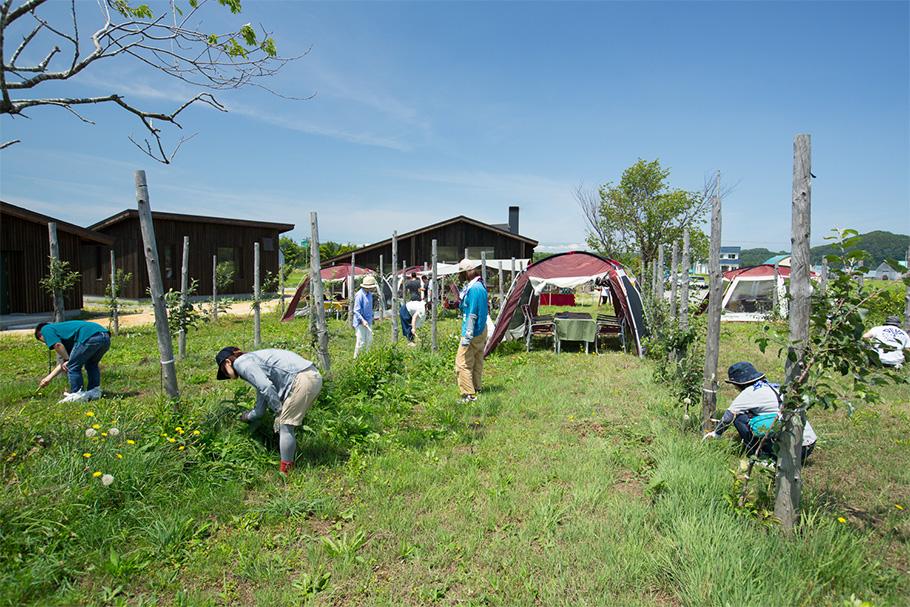 写真:完成後にこれまで参加した多くの仲間で林檎の苗木の手入れなどを行った