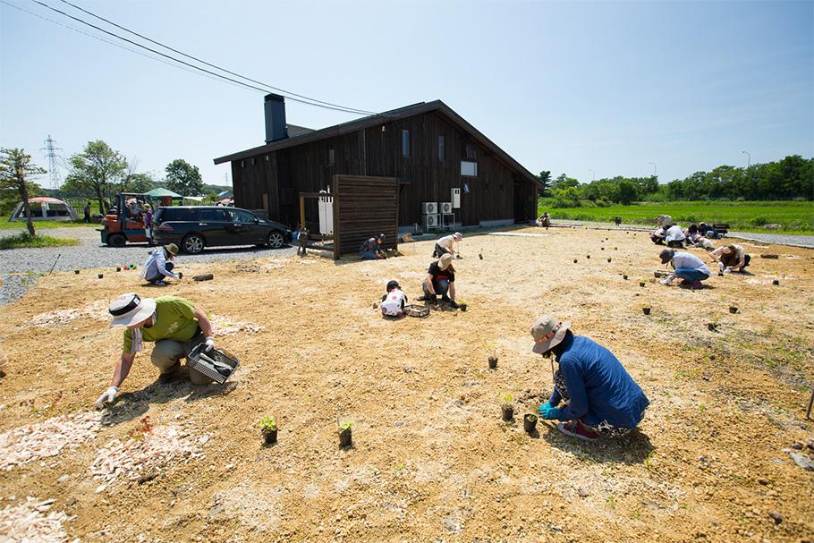 写真:建物周辺に北海道原生の樹木の苗木を植えているところ